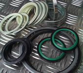 Dust seals and shims